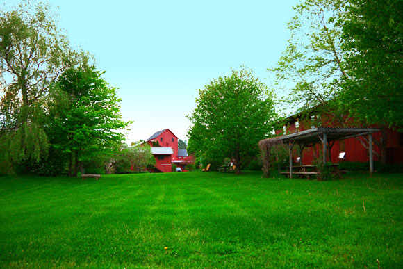 Red Mill Back Lawn