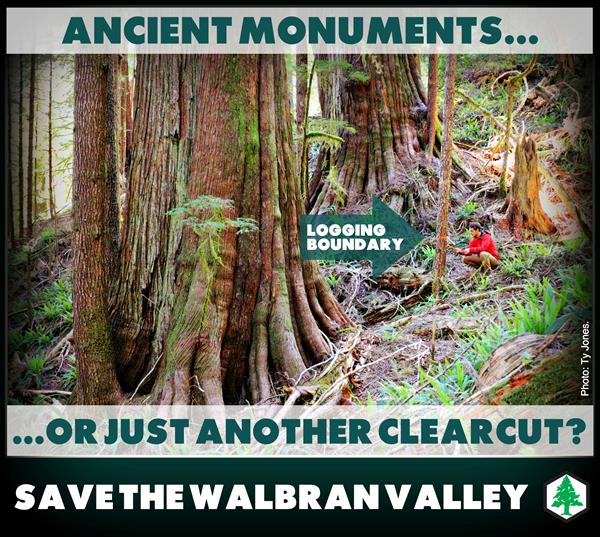 Walbran Valley: Ancient monuments...or just&#32